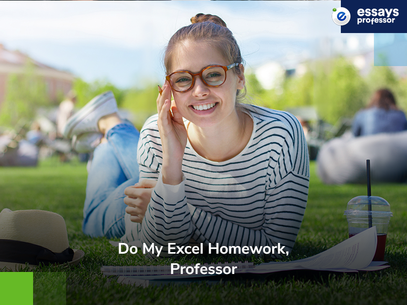 Do My Excel Homework Professor