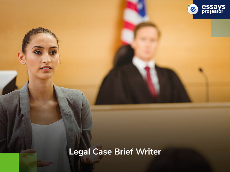 Law Case Brief Writer