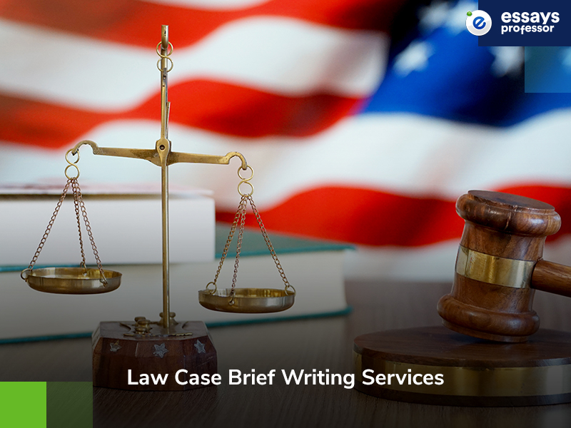 Law Case Brief Writing Services